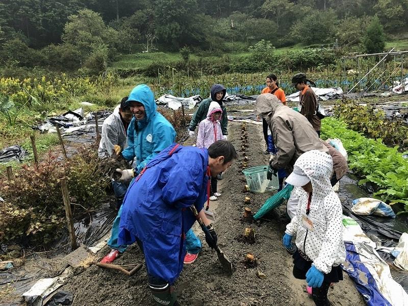 農業体験in喜佐谷「稲刈り編」