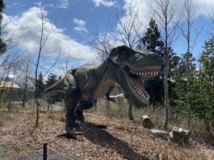 恐竜発掘・化石堀りキャンプ